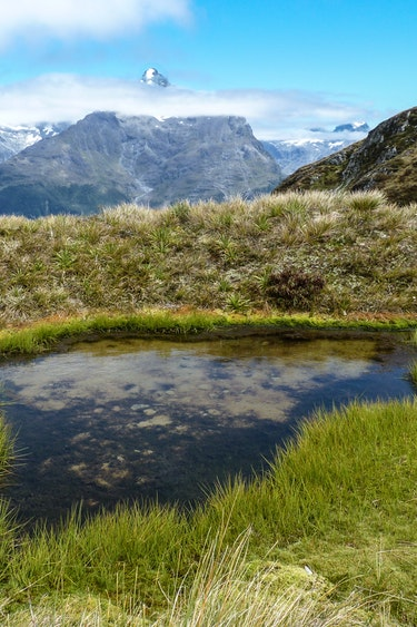 Neuseeland Fiordland Nationalpark