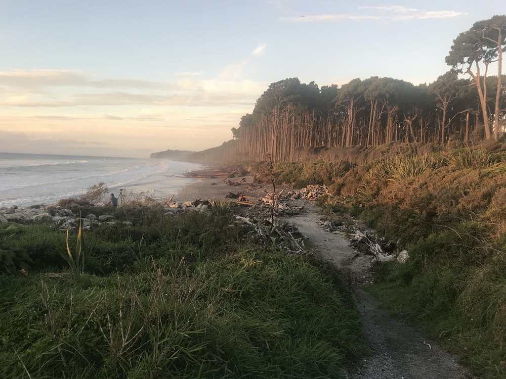 Rugged coastline of Hokitika | New Zealand nature
