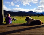 Stay in a comfortable chalet | New Zealand holiday with kids