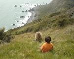 Stay at Kapiti Island | New Zealand holiday with kids