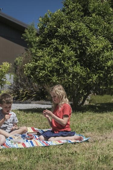 Nz mapua farm cottage picknick garden family stays very comfortable