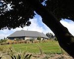Unique stay Tiromoana | New Zealand holiday