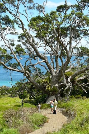 Nz whangarei villa beach walk family stays luxury