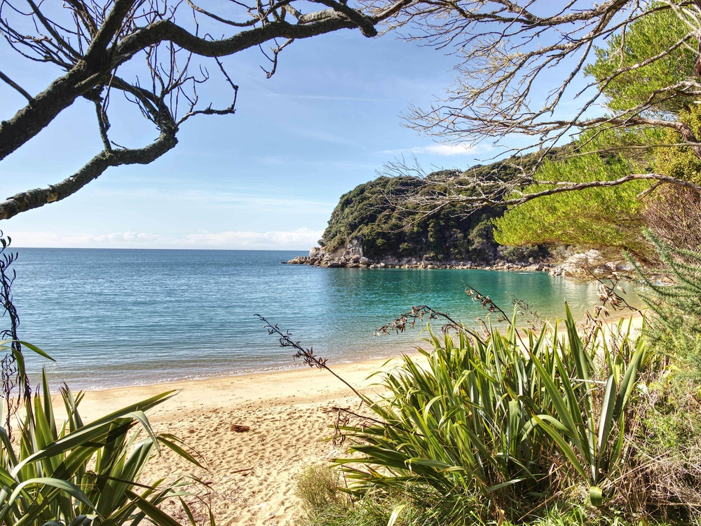 Hidden gems of the Bay of Islands | New Zealand nature