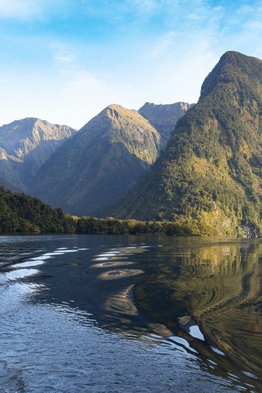 Nz doubtful sound reflections family best travel time