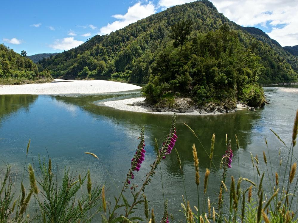 Lewis Pass wiggles through mountains | New Zealand nature