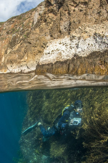 Nz poor knights islands diving photo family see and do adventurous