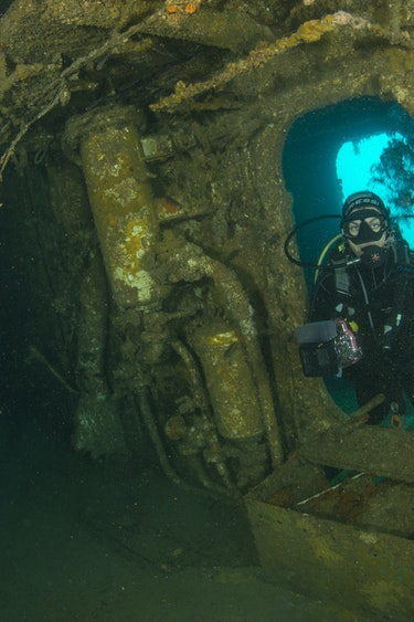Nz poor knights islands diving underwater world family see and do adventurous