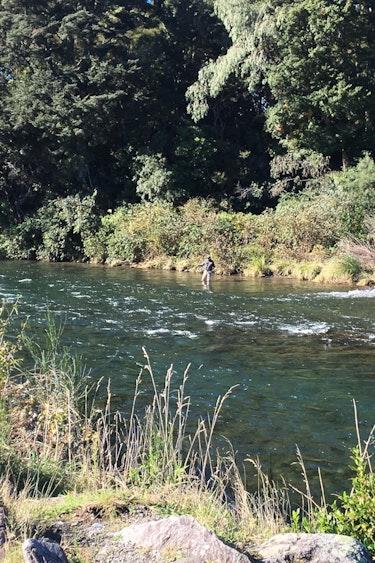 Nz tongariro river trail lake views family see and do active