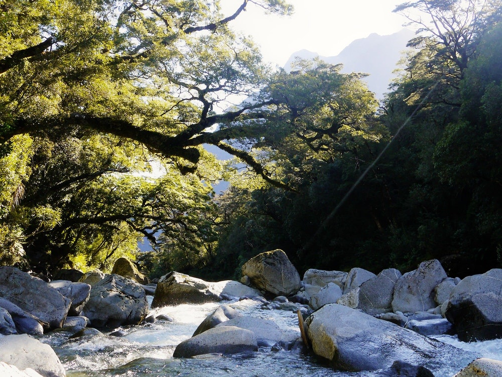 Fiordland National Park is named on the UNESCO World Heritage List