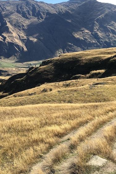 Nz wanaka farm roads friends compact car