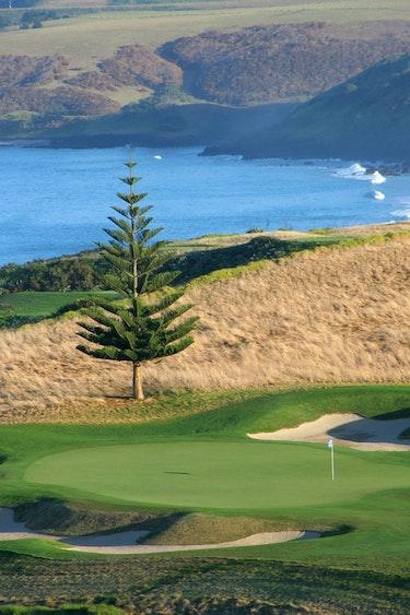 Nz kauri cliffs golf course friends gents easygoing