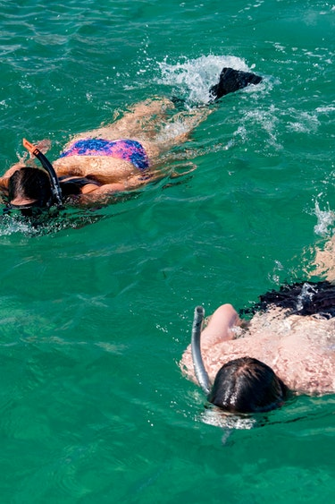 Nz bay of islands sailing catamaran snorkeling friends see and do easy going