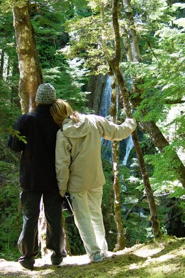 4058 Wanaka River Journeys Jet Boat and Wilderness Walk Half day3
