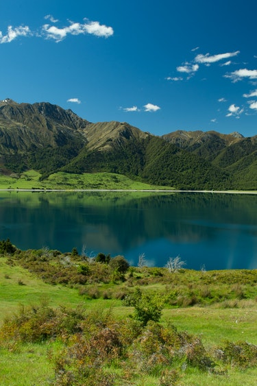 Nz silverpine lodge makarora mountain lake partner cars