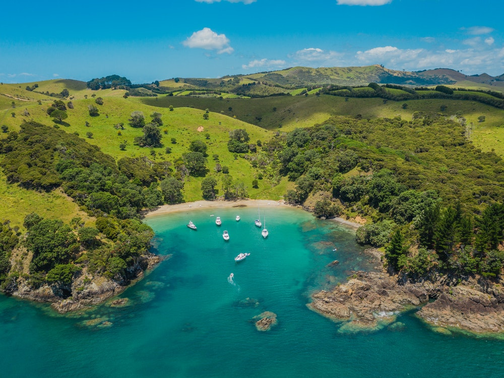 Fly and dine at Waiheke Island