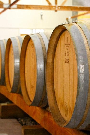 3225 Bubbly Grape Wine Tour 1575043119 bubbly grape wine tours