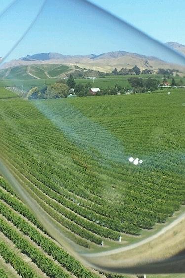 3225 Bubbly Grape wine tour