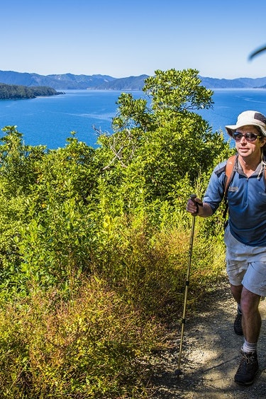 Nz queen charlotte nature hike partner see and do active