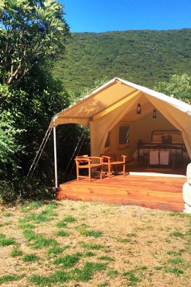 Nz kapiti island lodge tent nature stays very comfortable