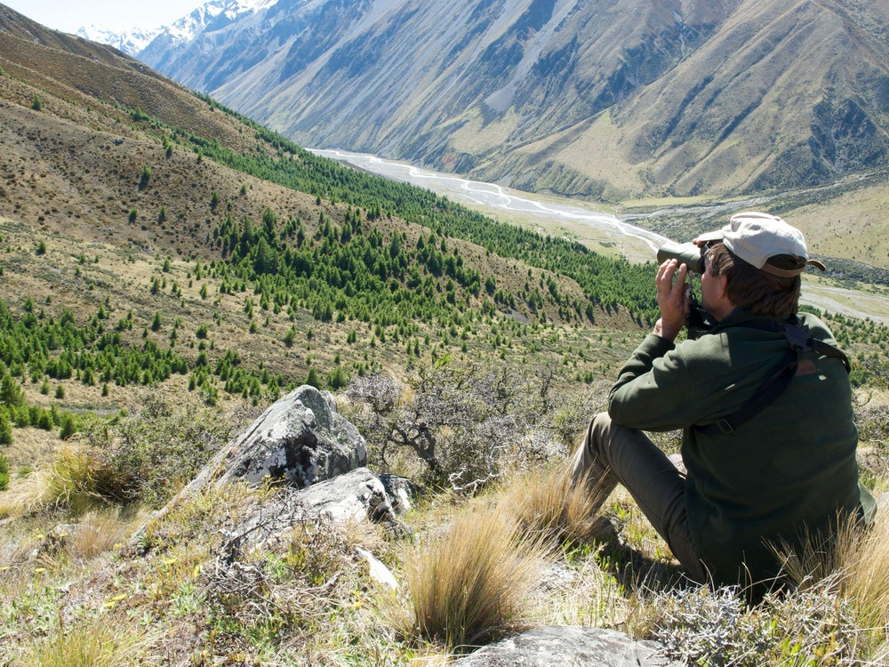 Get your binoculars out in the Aoraki/Mount Cook National Park