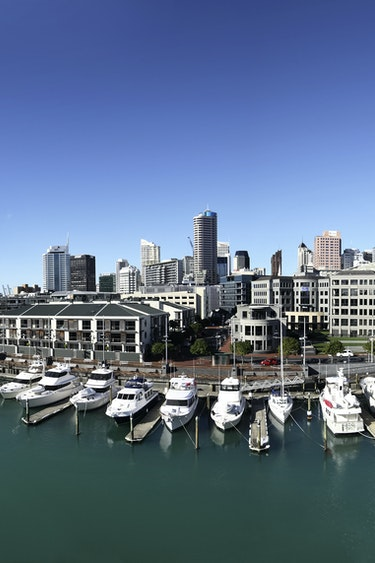 Nz auckland harbour city solo see and do easy going