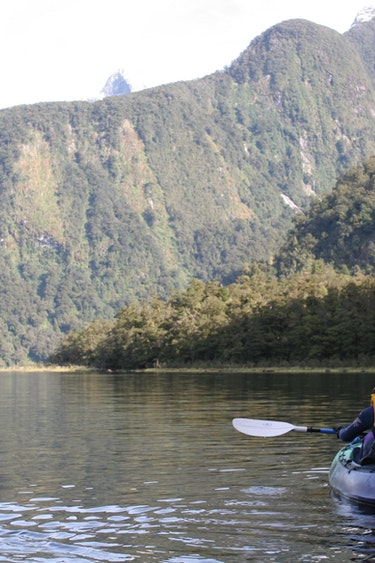 Nz doubtful sound boat kayaking solo see and do easy going