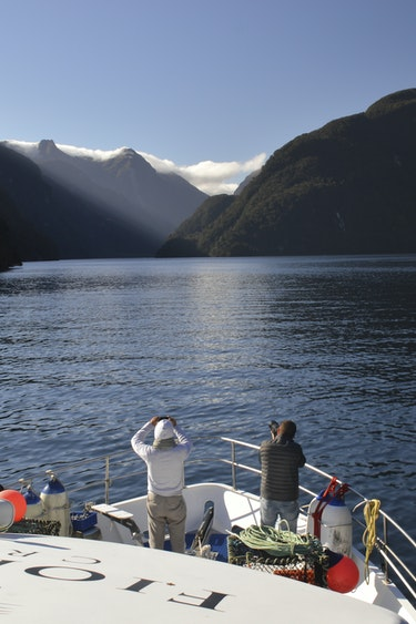 Nz doubtful sound boat nature fiord solo see and do easy going
