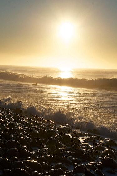 Nz dunedin beach surfers 2 solo active