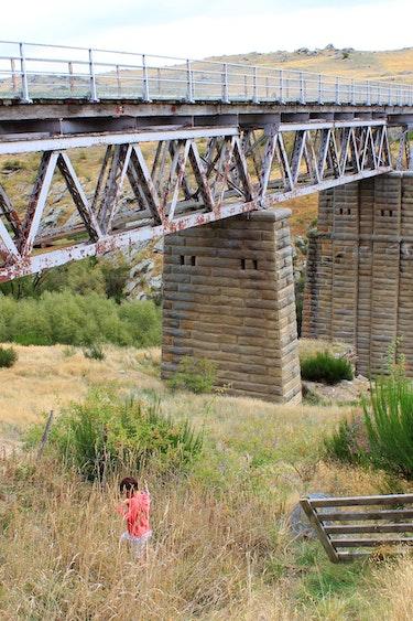 Nz otago bike trail bridge scenery see and do active