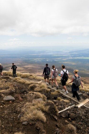 Nz tongariro alpine crossing solo see and do active 1