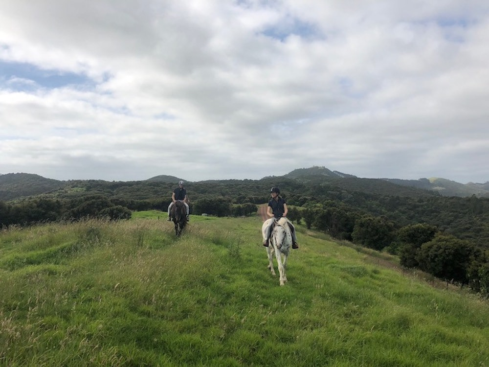 Horse riding over the rolling hills